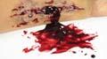 sangre-falsa-casera